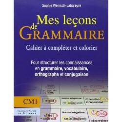 Mes leçons de grammaire CM1 : Manuel pour structurer les connaisances en grammaire vocabulaire orthographe conjugaison