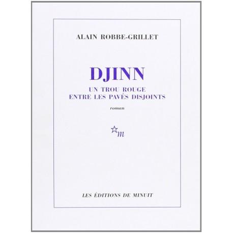 Djinn - Un trou rouge entre les pavés disjoints 9782707310385 Book
