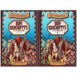 L'Ingénieux hidalgo Don Quichotte de la Manche Gustave DORE Hachette 0710377710043 Book