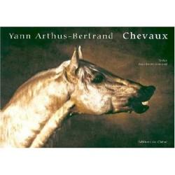 Chevaux 9782842775629 Book