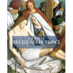 La Bible des églises de France Gaston DUCHET SUCHAUX Flammarion 9782080125200