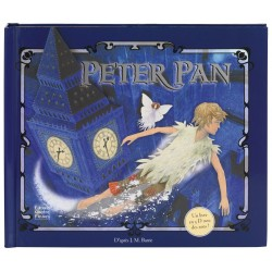 Peter Pan James Matthew Barrie Quatre Fleuves Pop up 9782841967728