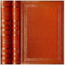 Histoire de la peinture 2/2V Michael LEVEY et Herbert READ