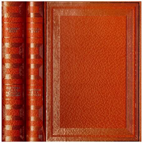 Histoire de la peinture 2/2V   Flammarion / Somogy 0710377710173 Book